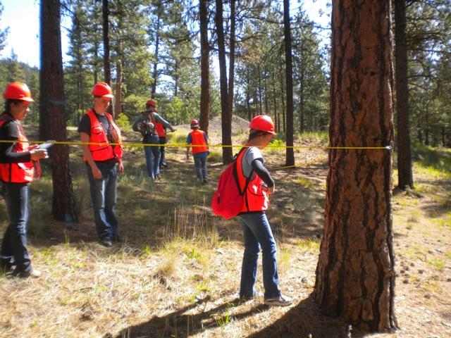 Forest Measurement – USFS McKay Creek