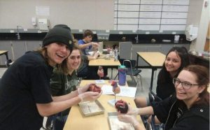 Anatomy students dissect livestock hearts
